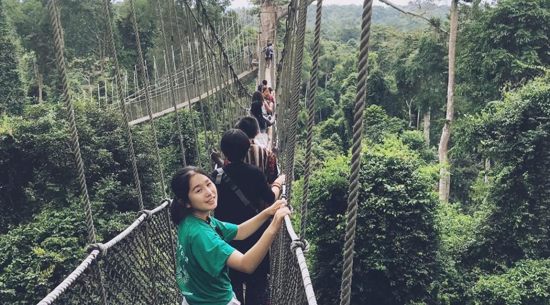 ガーナの国立公園の吊り橋からの景色を楽しむ高校生ボランティアたち